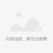 进口a7-audio专业级静噪音环境声音 拾音器 监控专用